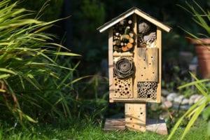 bird feeder shaped as a house in a garden